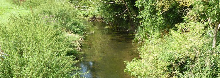 web river mease 4
