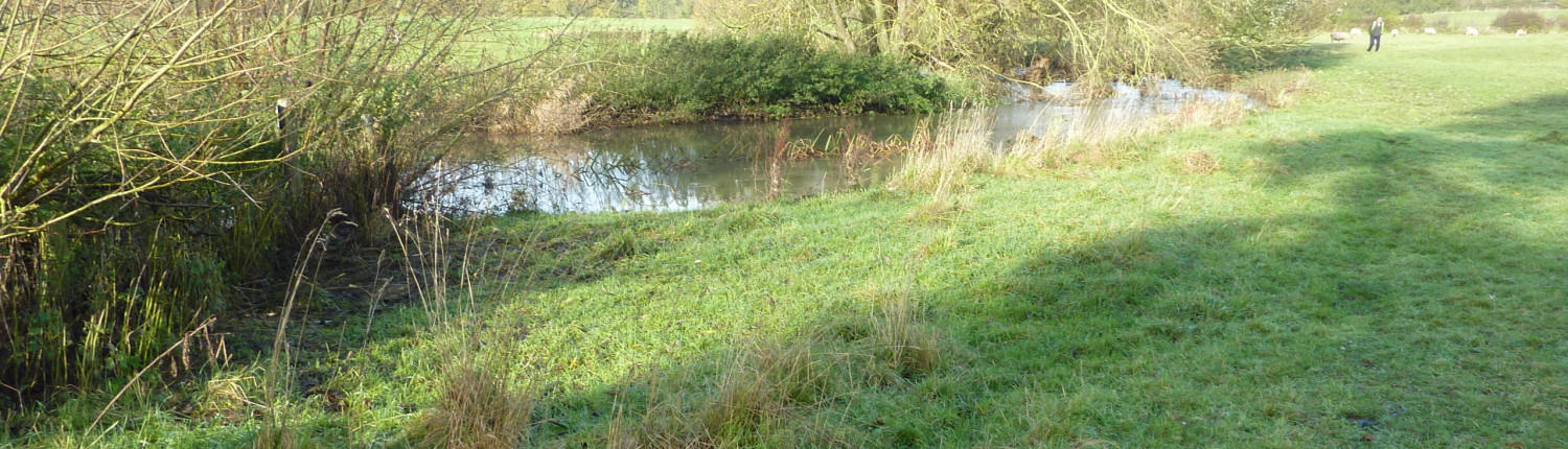 River Mease at Edingale